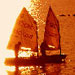 Beautfiul sunset and sailing boat